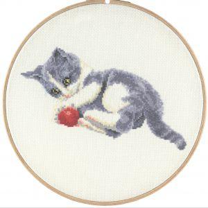 franciens cats