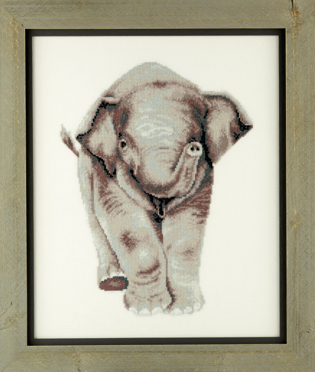 borduurpakket jong olifantje