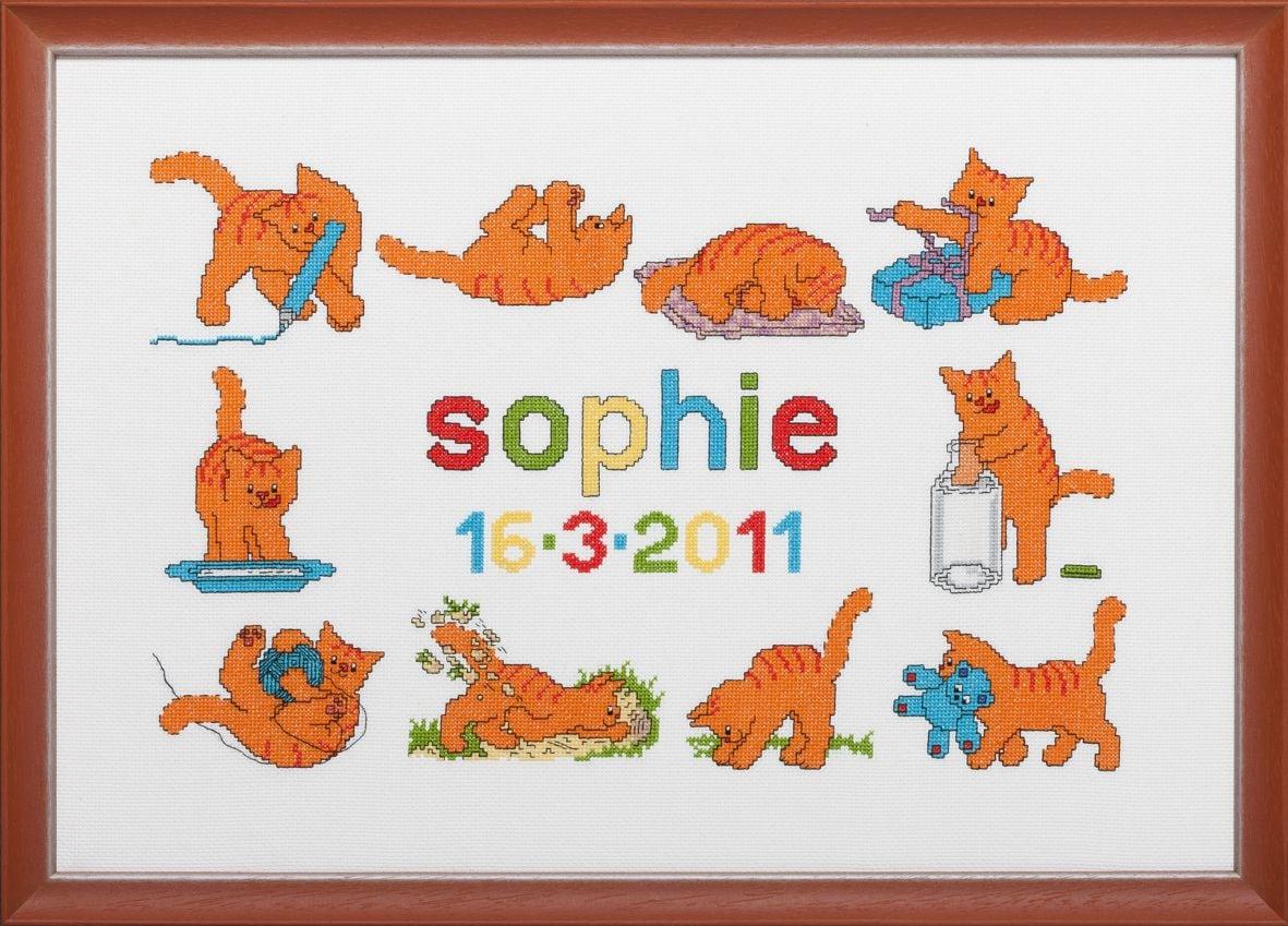 embroidery kit birthday sampler dikkie dik red tomcat