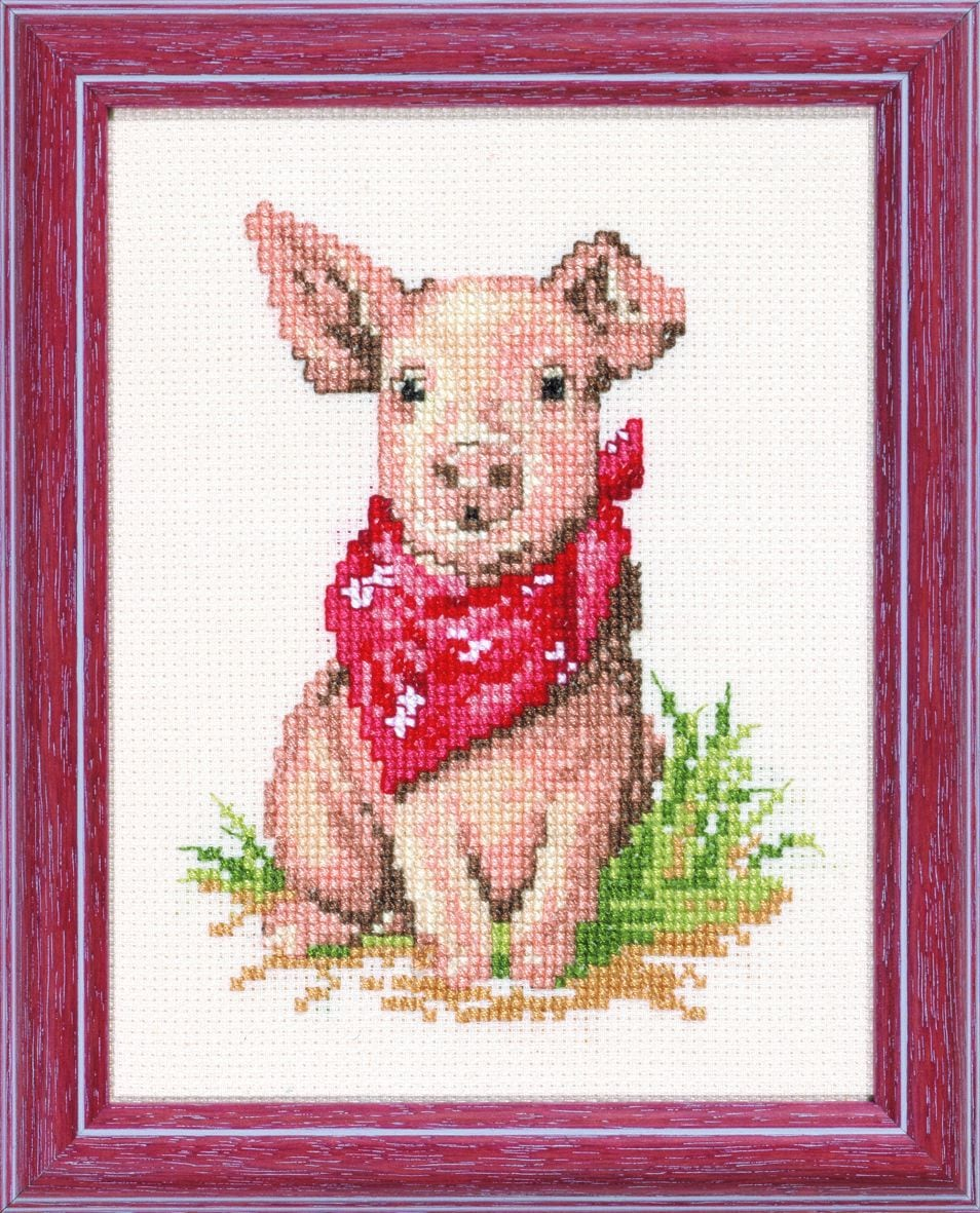 embroidery kit funny pig