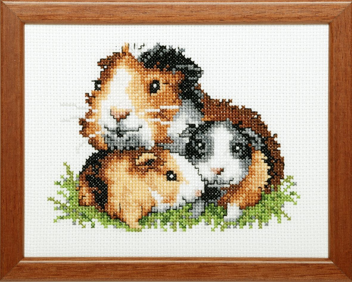 embroidery kit guineapig