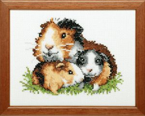 Embroidery kit guineapig.