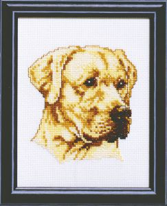 Embroidery kit labrador dog