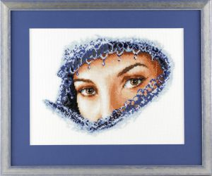 Embroidery kit mystery eyes
