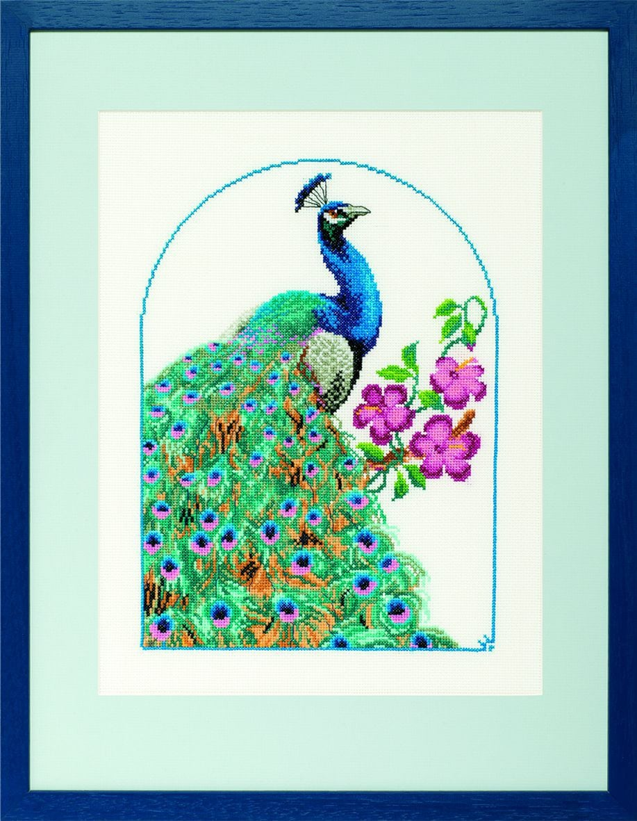 embroidery kit peacock