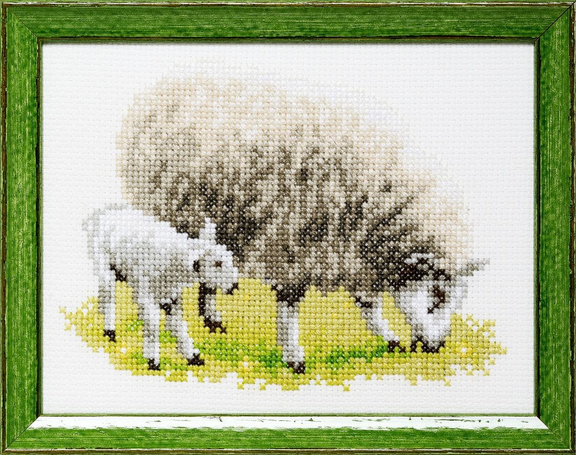 embroidery kit sheep and lambs
