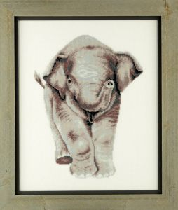 Embroidery kit young elephant